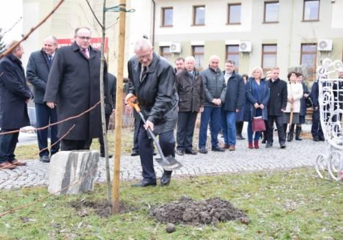 Podczas sesji zasadzono również dąb na skwerze obok Urzędu Gminy na pamiątkę 100-lecia odzyskania niepodległości. Fot: jasienica.pl